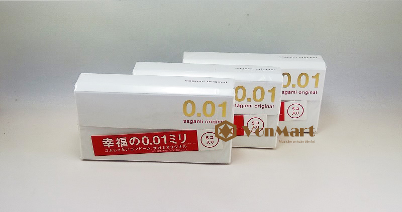 bao-cao-su-sagami-001
